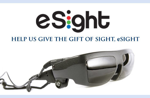 Setting Our Sights on eSight